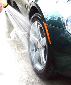 auto groomer hamilton